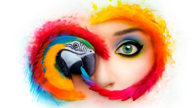 Adobe Creative Cloud©Adobe
