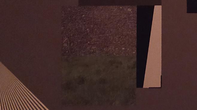 Redmi Note 8T: Ausschnitt des Testfotos mit Grashalmen©COMPUTER BILD