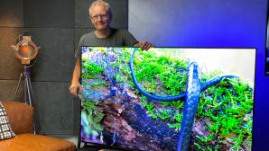 LG OLED TVs im Test: COMPUTER BILD verrät, welches Modell sich besonders lohnt.©COMPUTER BILD