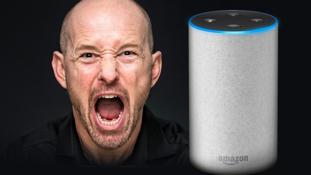 Alexa Hört Schlecht