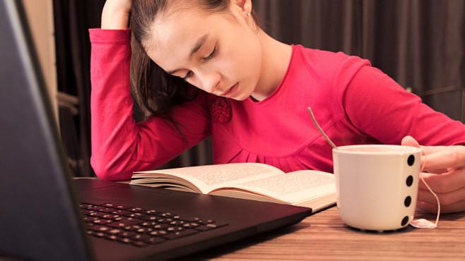 Homeschooling: Mädchen beim Lernen©iStock.com/PredragImages
