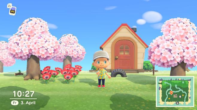Animal Crossing New Horizons©Animal Crossing New Horizons
