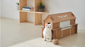 Katzenhaus aus Samsung-Verpackung©SAMSUNG
