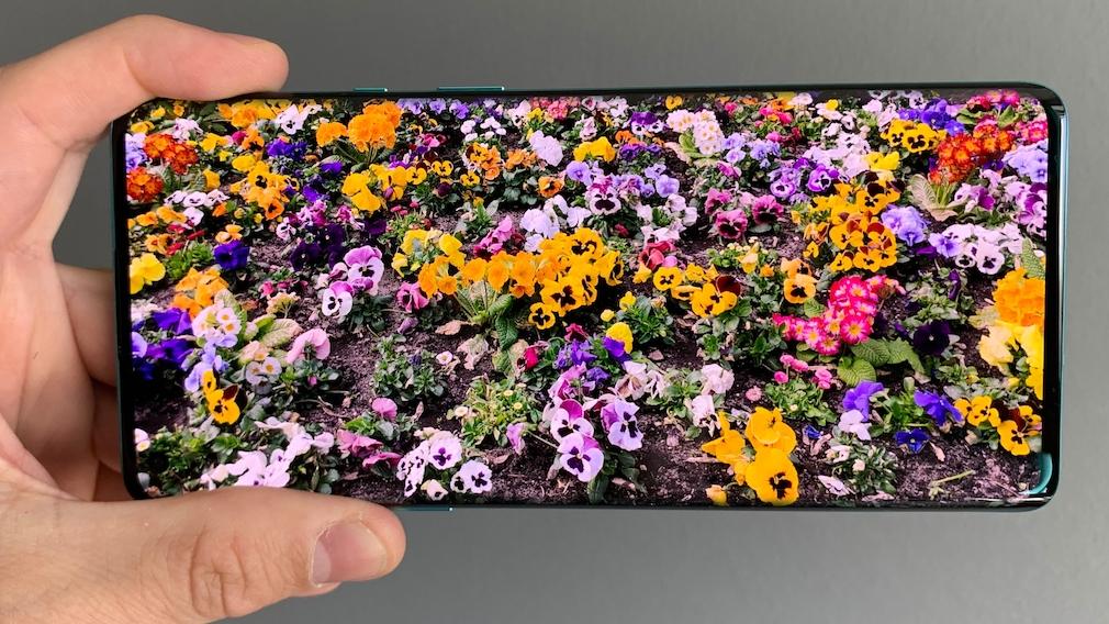 Display mit Blumen-Bild