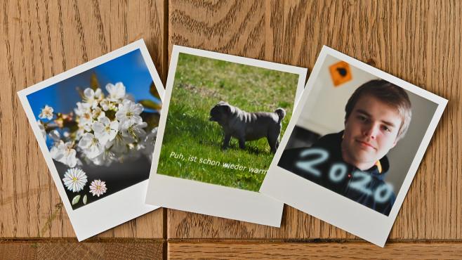 Canon Selphy Square QX10: Design per App©COMPUTER BILD