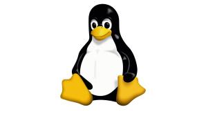 Linux©Linus Torvalds