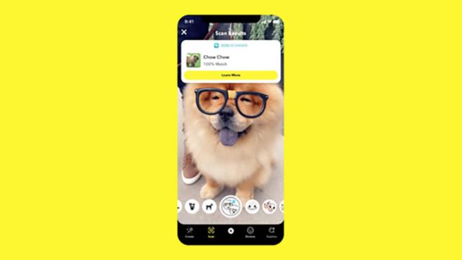 Hunde Scanner©Snap Inc.