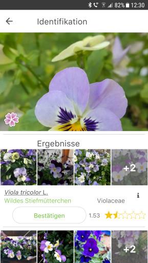 PlantNet Pflanzenbestimmung (Android-App)
