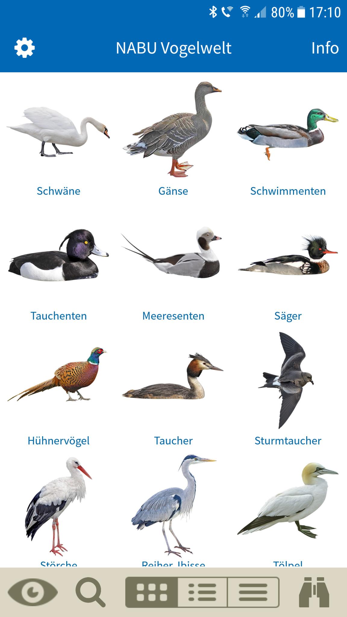 Screenshot 1 - NABU Vogelwelt: Vögel entdecken und bestimmen (Android-App)