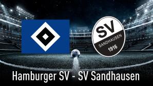 Hamburger SV gegen SV Sandhausen©iStock.com/mel-nik, Hamburger SV, SV Sandhausen