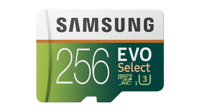 Samsung EVO Select 256 GB©Amazon