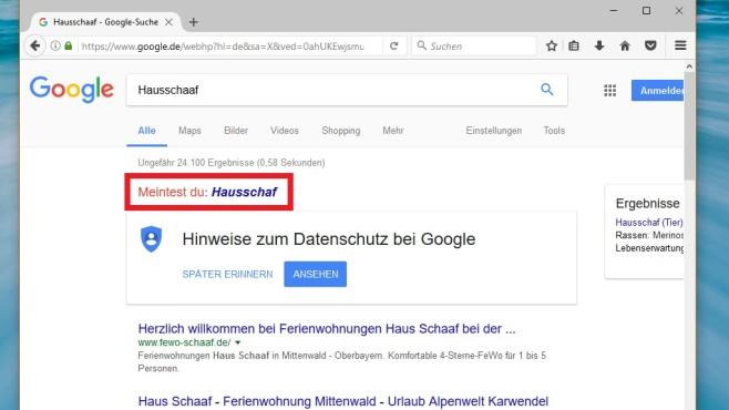 Bessere Suchergebnisse mit richtiger Rechtschreibung ©COMPUTER BILD