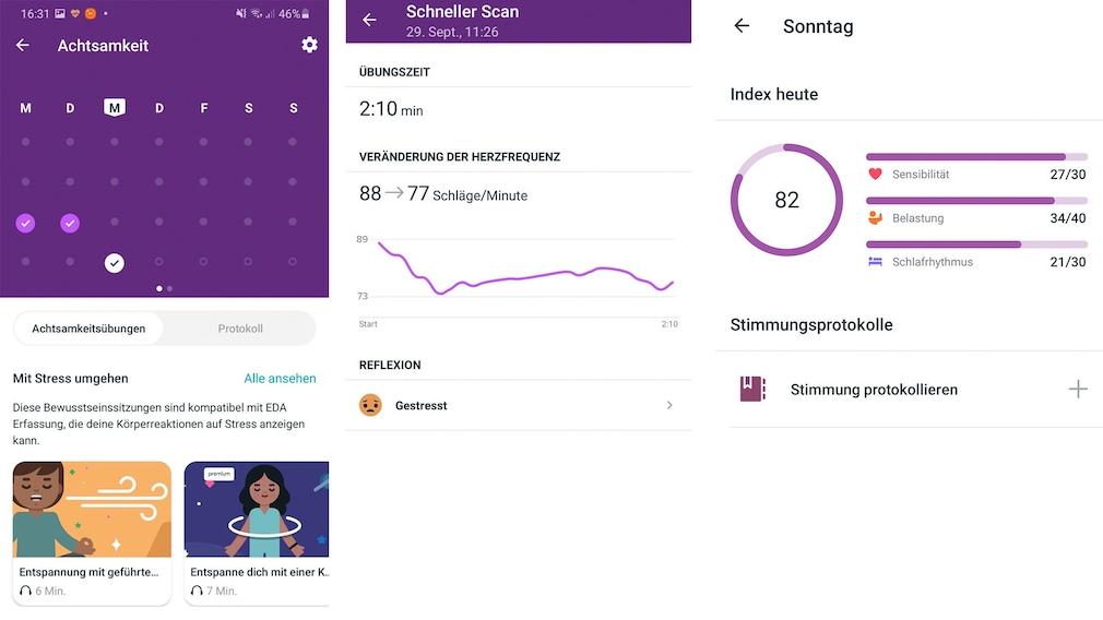 Fitbit App Stress