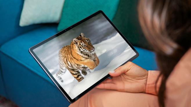 Frau hält das Lenovo Tab P11 Pro, auf dem Bildschirm ist ein Tiger zu sehen.©Lenovo