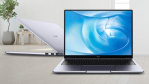 Huawei MateBook 14 AMD und Intel auf dem Fußboden vor Pflanzen©iStock.com/terng99, Huawei
