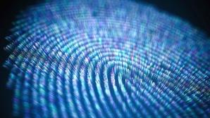 Fingerabdruck©Getty Images/KTSDESIGN/SCIENCE PHOTO LIBRARY