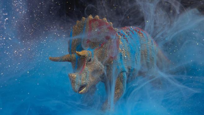Triceratops©pexels.com