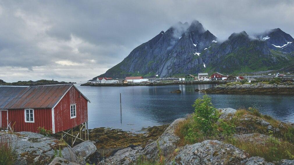 Blick über einen norwegischen Fjord©pexels.com