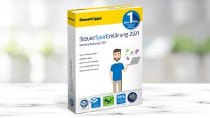 SteuerSparErklärung 2021©iSock.com/Chainarong Prasertthai