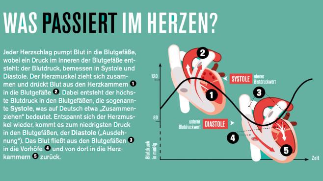 Blutdruck©Nachbau von COMPUTER BILD, nach einer Vorlage von istock