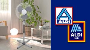 Standventilator bei Aldi im Angebot: Rowi zum Discounterpreis©Aldi, Rowi