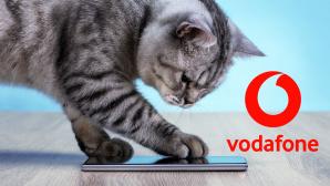 Katze mit Handy©iStock.com/sefa ozel, Vodafone