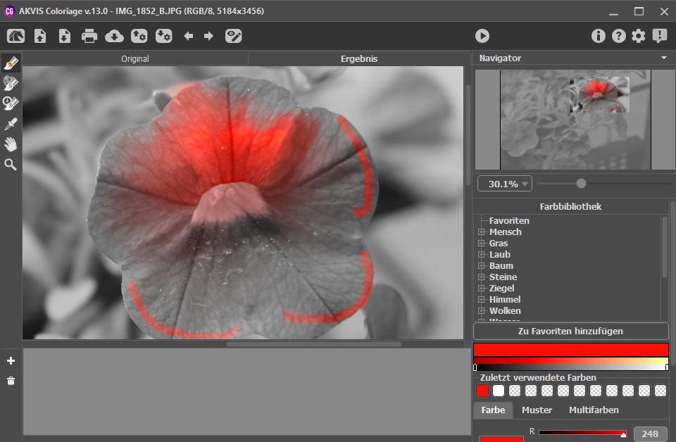 Screenshot 1 - Akvis Coloriage
