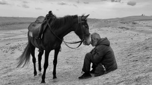 Mann mit Pferd©Sharan Shetty / IPPAWARDS