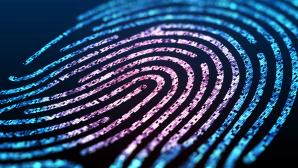 Browser-Fingerprinting: Tracking-Technik identifiziert Nutzer heimlich durch die Hintertür©iStock.com/ Iaremenko