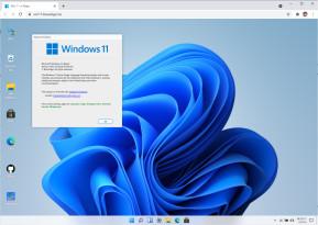 Windows 11 im Browser