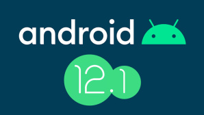 Android 12.1©Google
