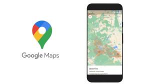 Google Maps: Waldbr�nde©Google