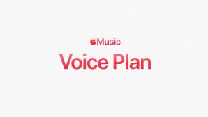 Voice Plan©Apple