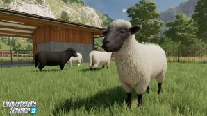 Landwirtschafts-Simulator 22 Schafe auf der Weide©Astragon Giants