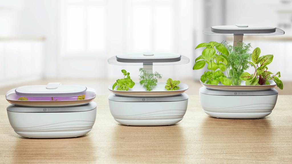 Grün, grüner, Bosch Smart Grow Life: Der smarte Kräutergarten im Praxis-Test