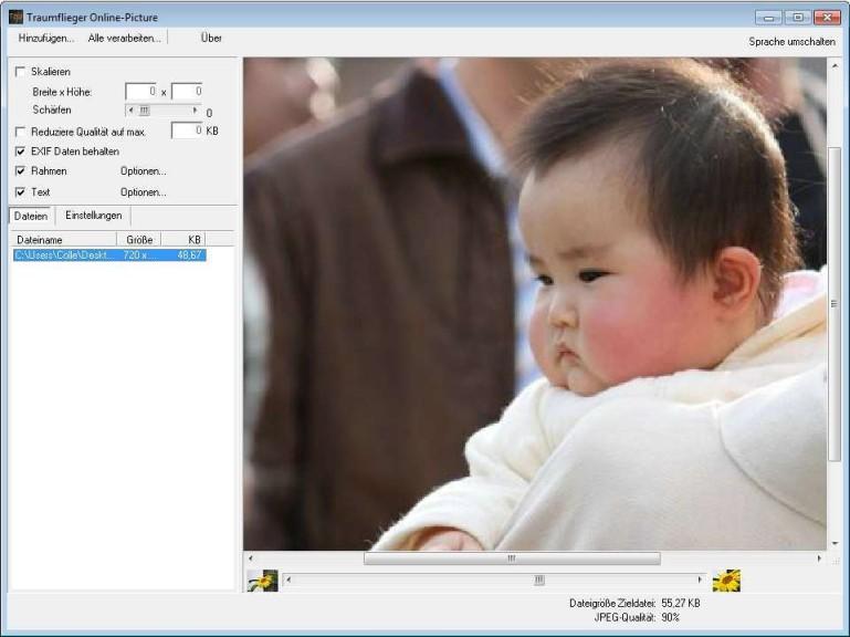 Screenshot 1 - Traumflieger Online-Picture