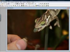 PhotoFiltre: Bildbearbeitungsprogramm