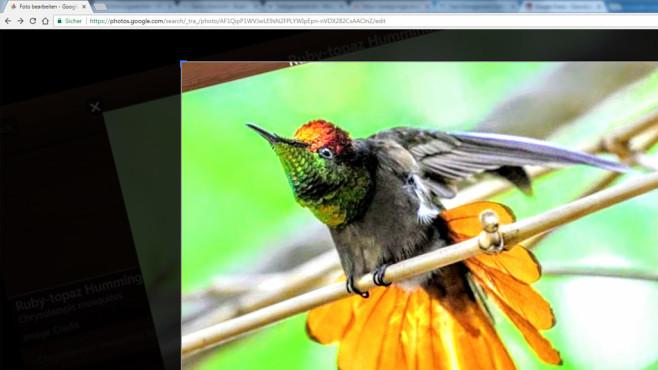 Google Fotos ©COMPUTER BILD