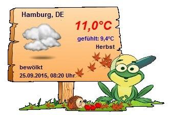 Screenshot 1 - Wetterfroschi