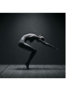 Bildergalerie:  Die 100 schönsten Akt-Bilder ©thorstenj