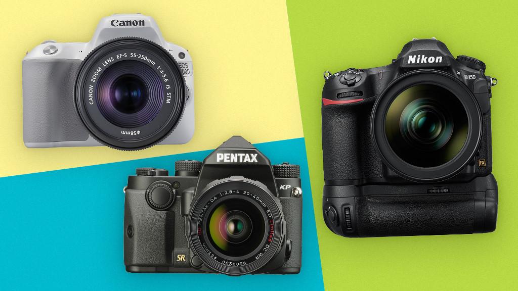 Spiegelreflexkamera im test: die topmodelle! audio video foto bild