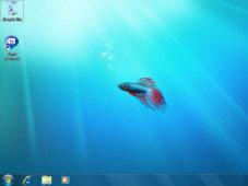 Betriebssystem Windows 7