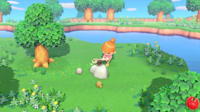 Animal Crossing Switch©Nintendo