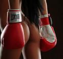 Bild: Knock Out – von: Schlewitz©Schlewitz