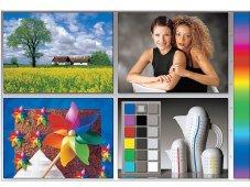 Farbeinstellung: Testbild des Industrieverbandes Cipho