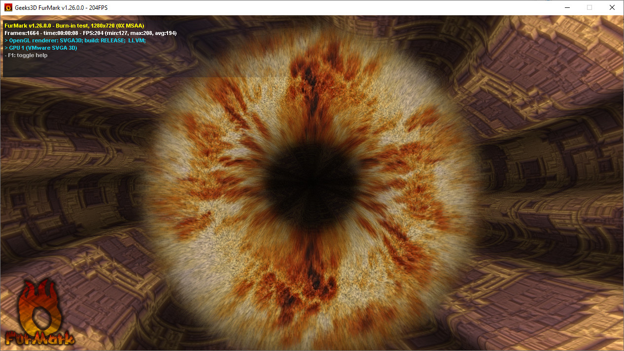 Screenshot 1 - FurMark