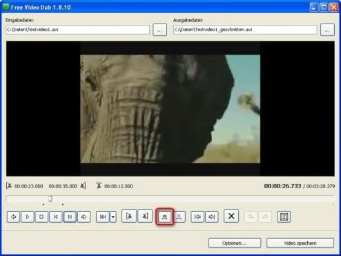 Free Video Dub: Videoausschnitt kontrollieren