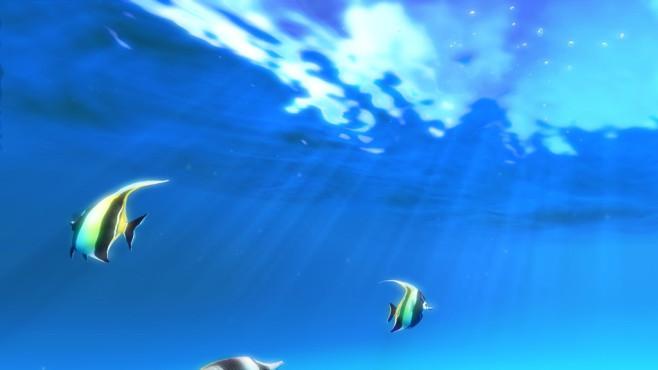 Sim Aquarium 3D ©COMPUTER BILD