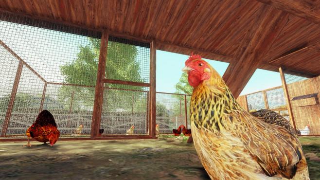 Farm-Experte 2016 ©Ravenscourt