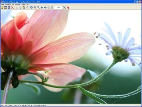 IrfanView ©Screenshot